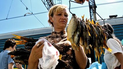 fish_seller-1.jpg