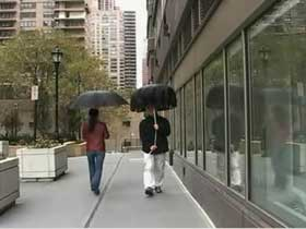 1133163133_umbrellaPolite_1.jpg