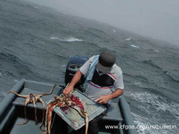 boat6w.jpg