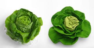 vier_salad.jpg